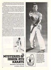 The Mysteries of Isshin-Ryu